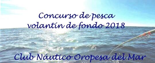 Concurso de pesca Volantín de Fondo CNOM