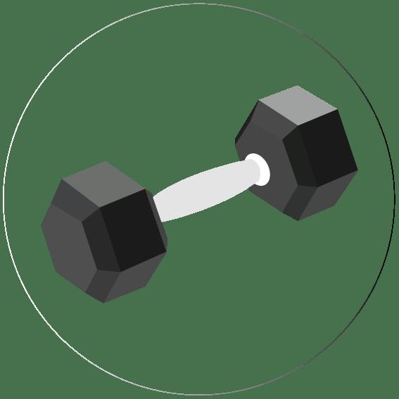 gimnasio - Servicios