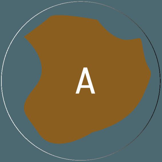 superficie de tierra - Servicios