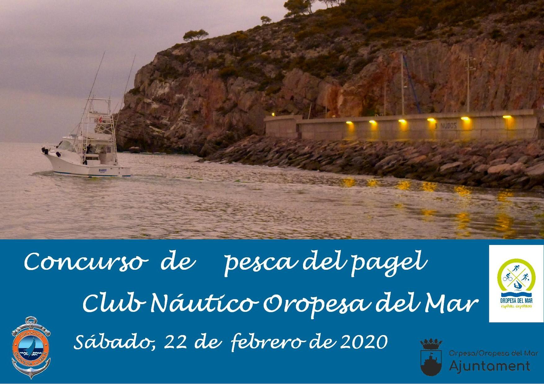 pescapagel2020 - Clasificaciones concurso pesca al pagel